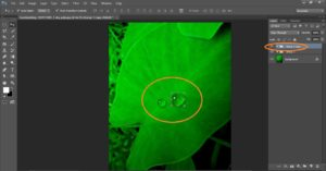 HOW TO MAKE WATER DROPS IN PHOTOSHOP