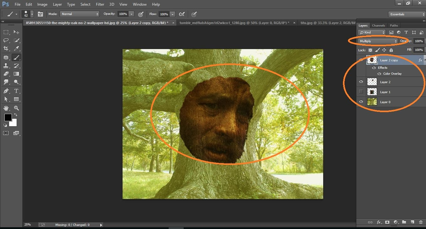 How to create disguise Face onto fastidious, tree Bark - in Photoshop cc manipulationHow to create disguise Face onto fastidious, tree Bark - in Photoshop cc manipulation