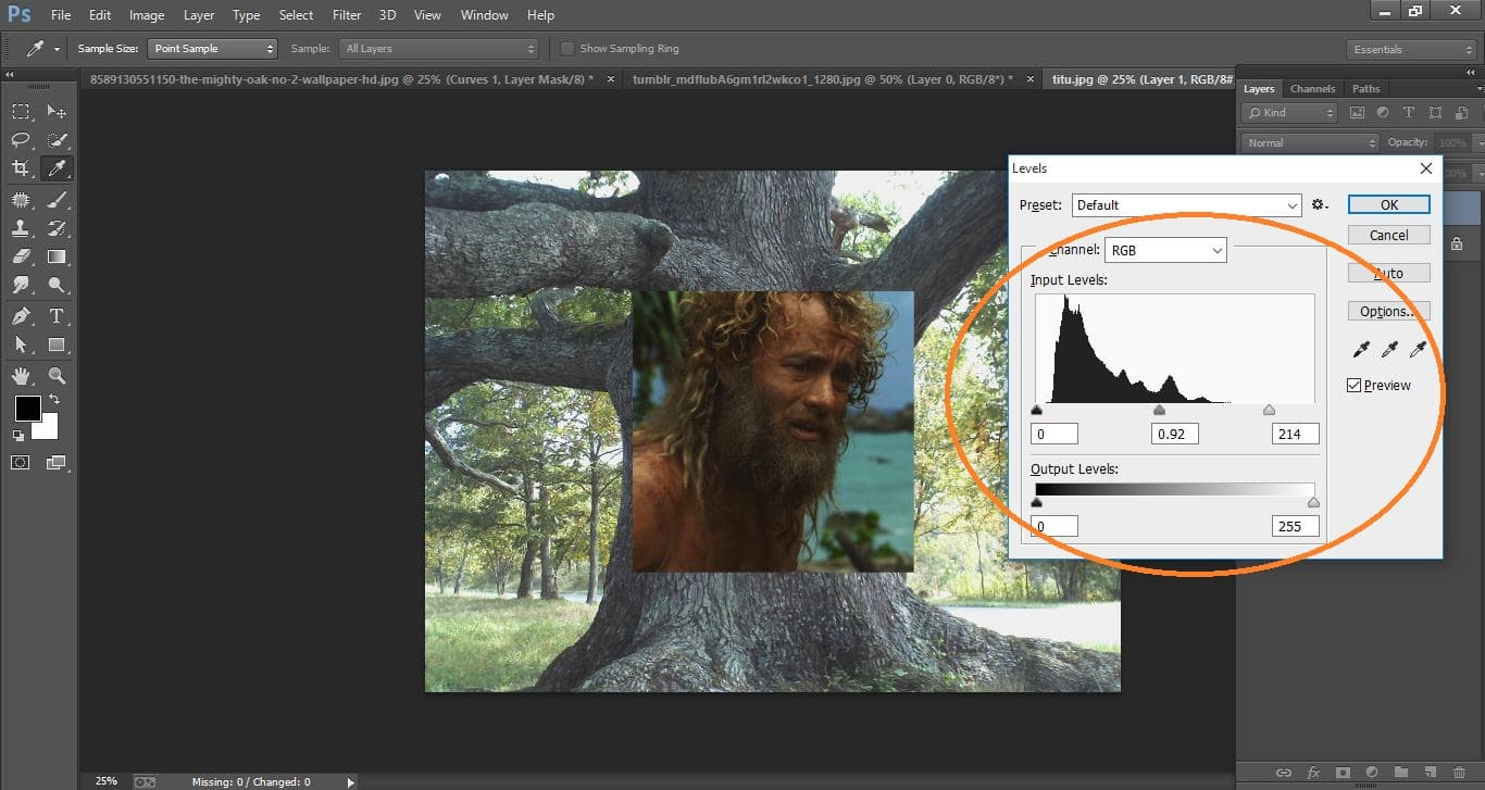 How to create disguise Face onto fastidious, tree Bark - in Photoshop cc manipulation